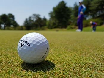 golf-3216250_1280.jpg